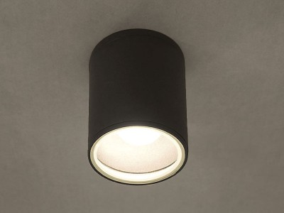 Stropna svetilka FOG