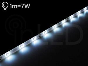 LED trak SPOT 30LED/m, HLADNA BELA, ECO